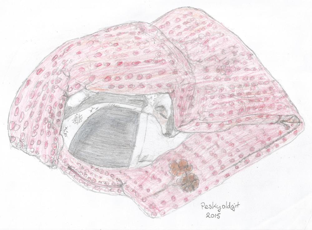 MollySleeping